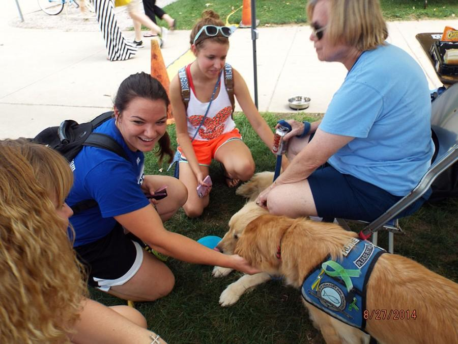 Two Comfort Dogs are greeted by students at PanterPalooza in the South Quad in the Fall 2014 semester