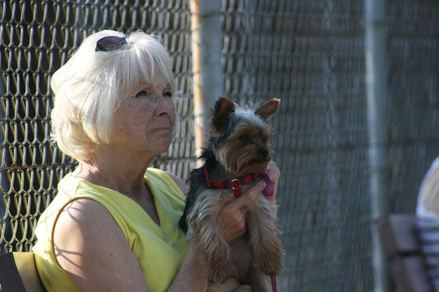 Marilyn+Shull+of+Mattoon%2C+IL+and+her+10+month-old++Yorkie%2C+Izzy+watch+as+the+instructor+lectures+about+puppy+safety+in+the+summer+months.+The+training+classes+have+been+going+on+since+1995.