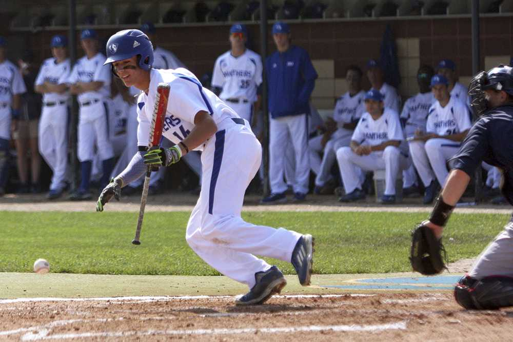 Freshman Nick Maton bunts during the Panthers' game against Belmont April 22 at Coaches Stadium. The Panthers lost, 21-9.