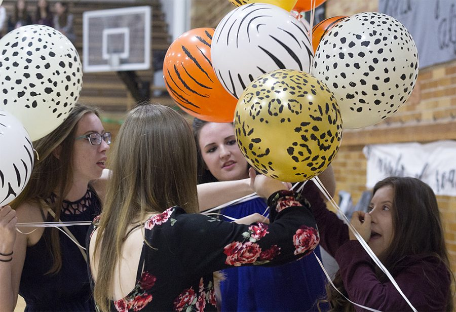 """Students untangle balloons Monday night prior to the """"Night of Roaralty"""" coronation event at McAfee Gym."""