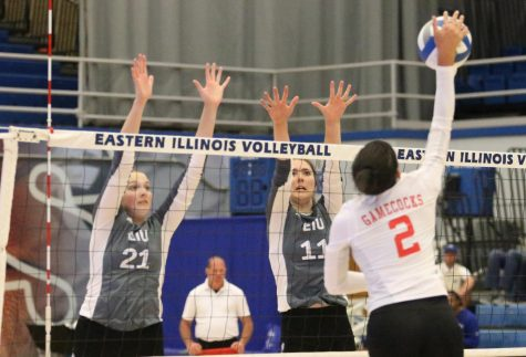 Volleyball to play in four matches during Panther Invitational