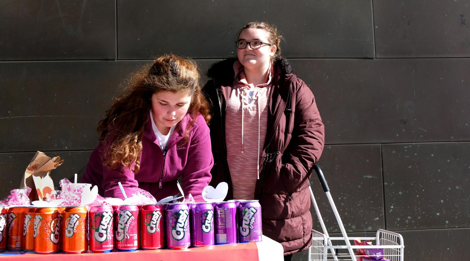 Members of Phi Sigma Pi Carrie Benjamin, a freshman elementary education major, and Ashlyn Pinney, a senior psychology major, sell soda pop to raise money for SACIS Thursday afternoon outside of the Doudna Fine Arts Center.