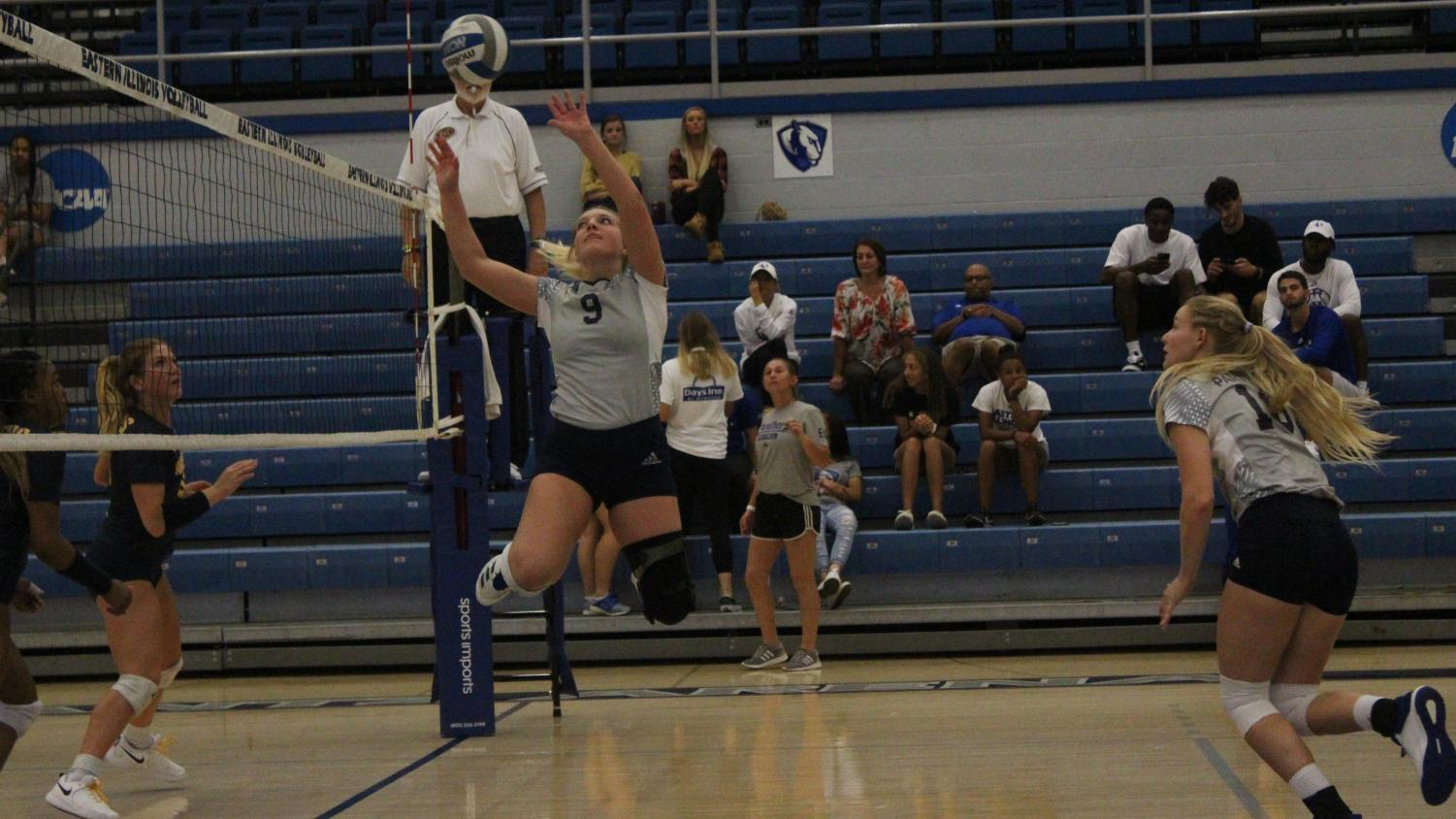 Eastern setter Bailey Chandler guides the ball over the net as teammate Maggie Runge makes her approach in the Panthers' match against Murray State on Sept. 27. Eastern lost the match in straight sets.