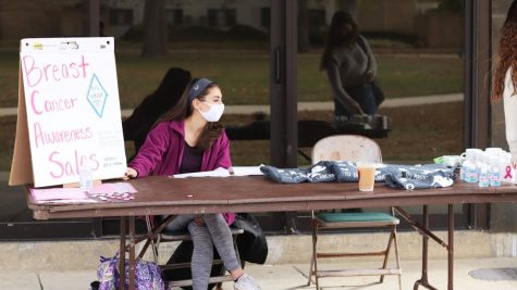 Sophia Parrillo, a junior elementary education major, sells mugs, T-shirts, pins and hand sanitizer for Breast Cancer Research during Breast Cancer Awareness month at the Library Quad Tuesday afternoon.